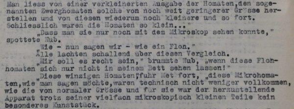 """Auschnitt aus dem Typoskript des Romans """"Das Automatenzeitalter"""""""